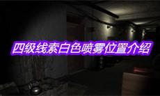 《孙美琪疑案王勇》四级线索白色喷雾位置介绍